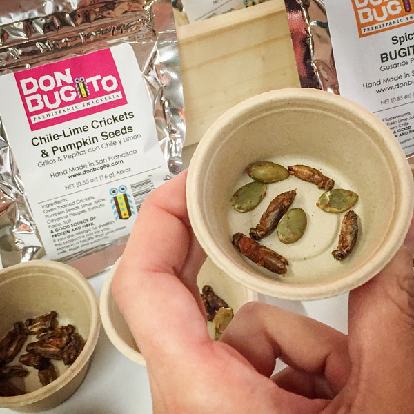 Edible crickets from Don Bugito, Winter Fancy Food Show