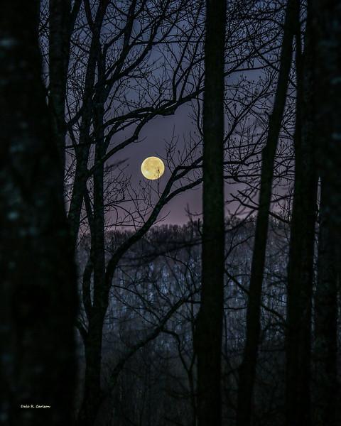 Moon Before Yule