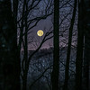 Moon Before Yule