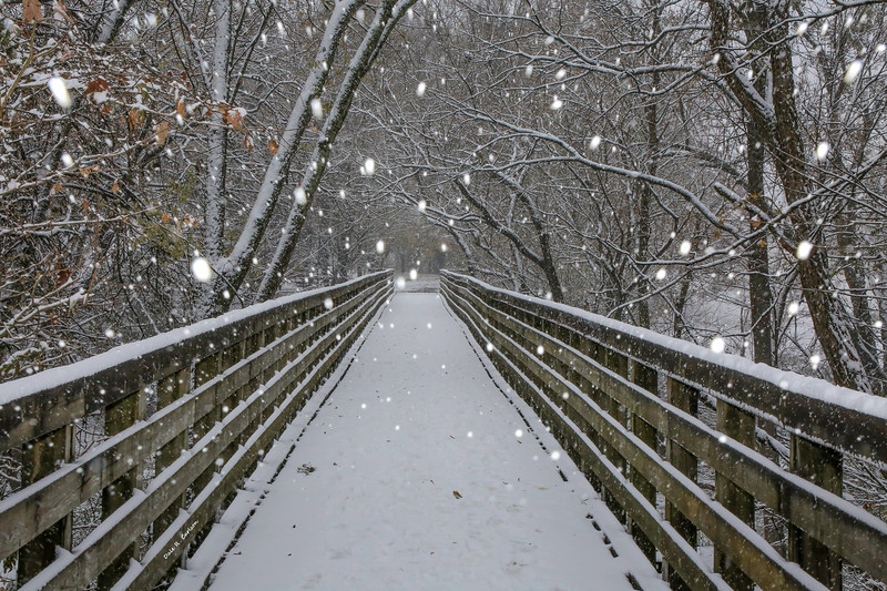 Creeper Trail Snow Globe