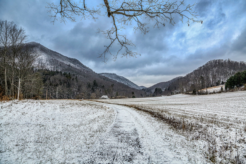 Taylors Valley Winter