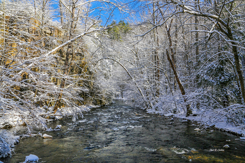 Winter on the Creek