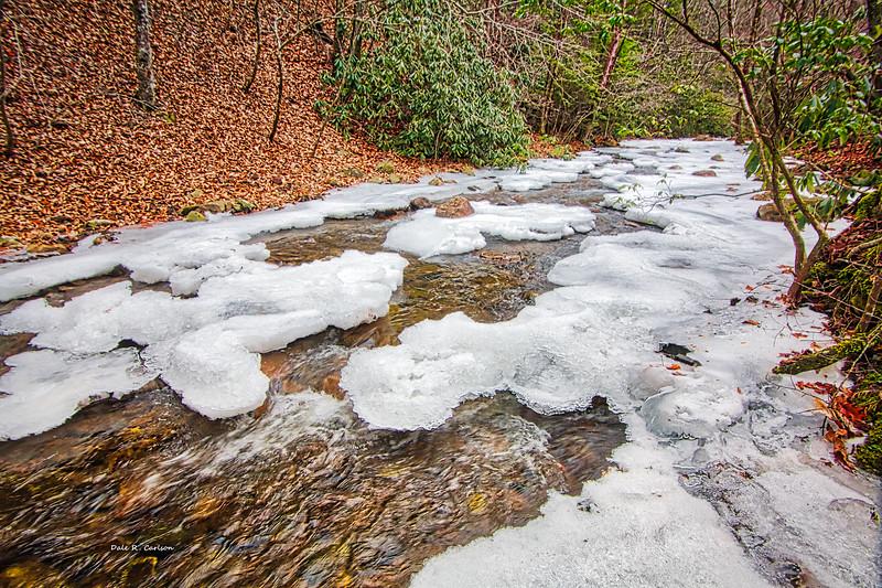 Laurel Creek Winter
