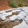 Laurel Creek Winter