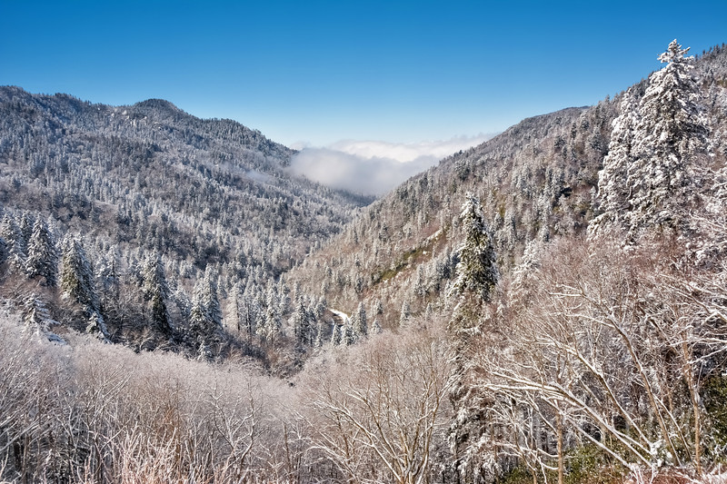 Winter In The Smokies - M&D Hills Photography