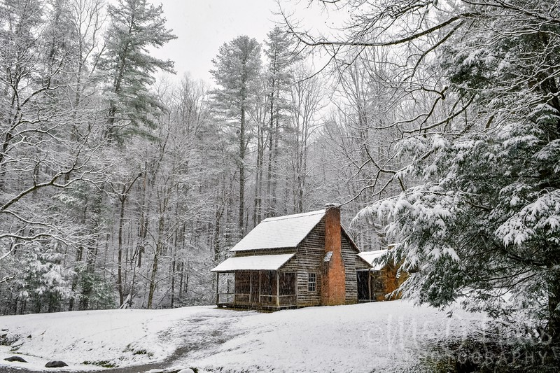 Snowfall At Henry's Cabin