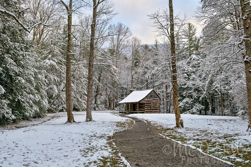 December Snow At Carter's Cabin