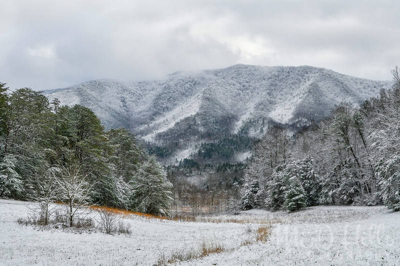 Cades Cove Winter Magic