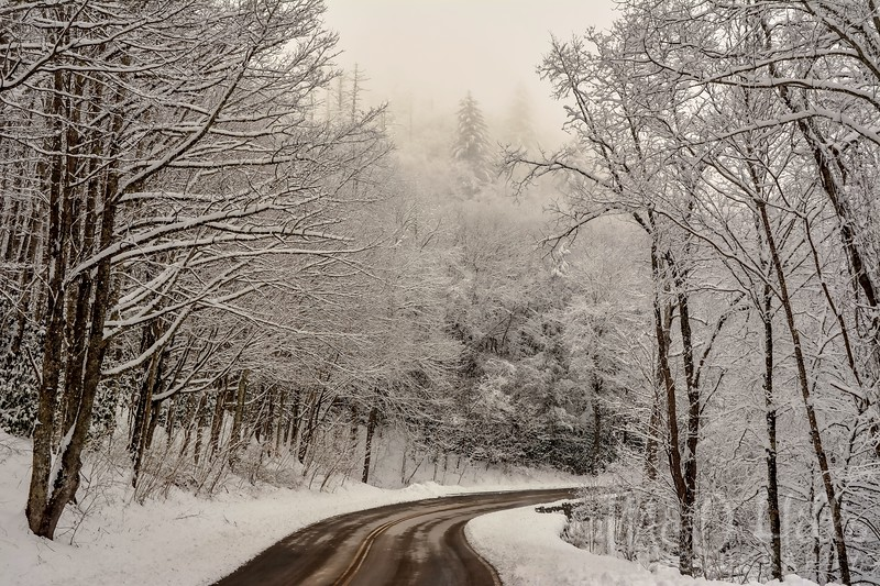 A Winter's Drive Up Newfound Gap