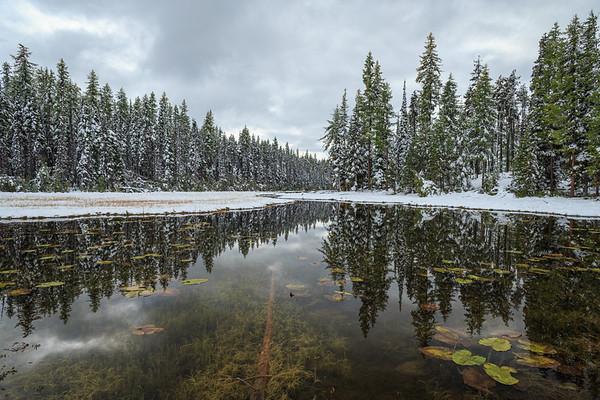 First Snow at Idleback Lake