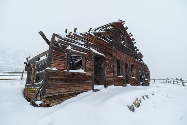 Haynes House Blizzard
