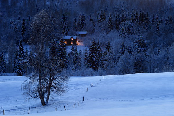 House in the forest at dusk in winter