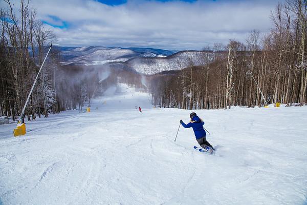 Bluebird ski western