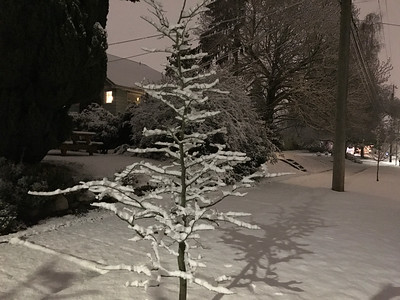 Snow! 2016