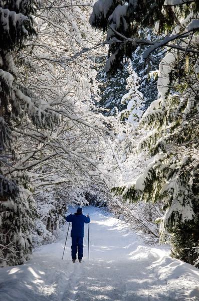 skierick.jpg