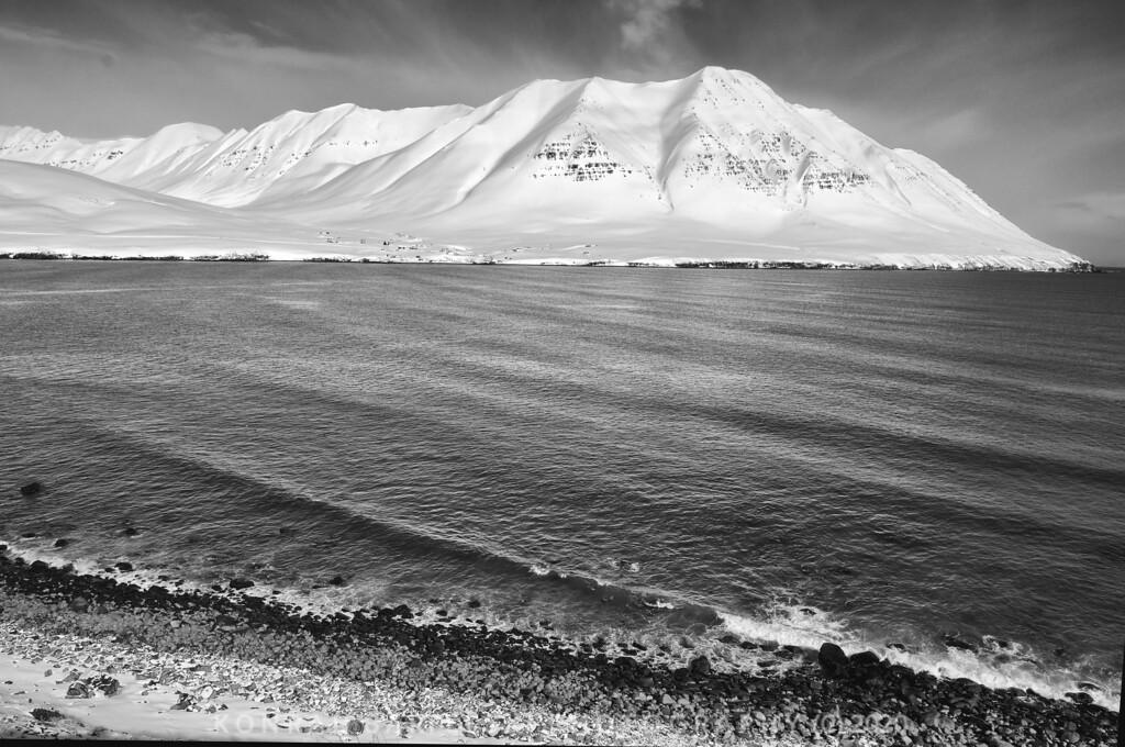 The Arctic Sea