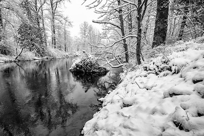 North Fork Reflection Downstream Snowy Morning BW Sharp 2-4-19