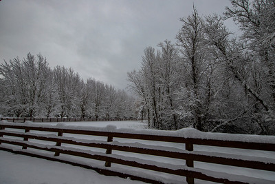 Fence and driveway snowy day 2-4-19