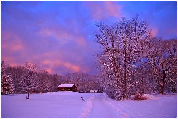 Winter / Snow-Scapes