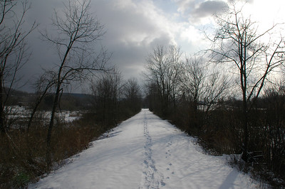 A winter walk near Dryden lake
