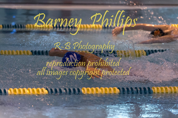 Swim Meet 1-21-2020.....by Barney
