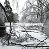 Winter Storm 2009 : 1 gallery with 31 photos