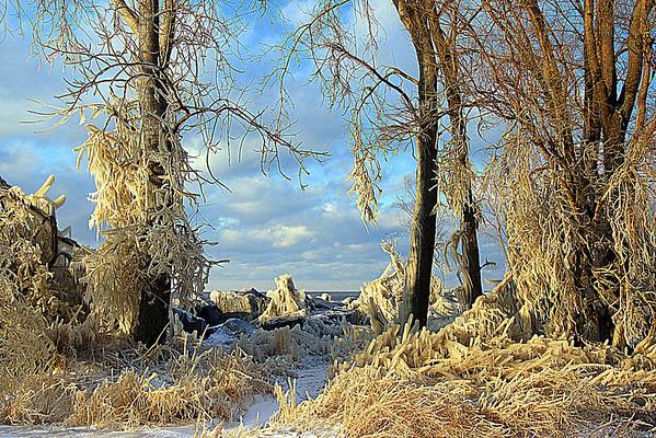 Winter Storm Shots