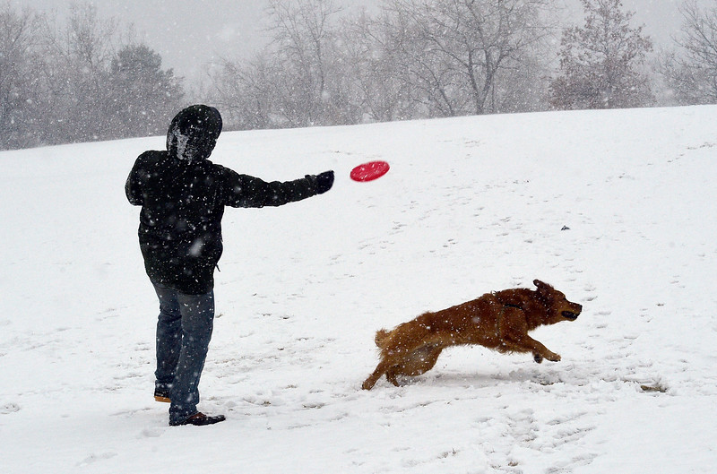 SnowBomb_CG10327