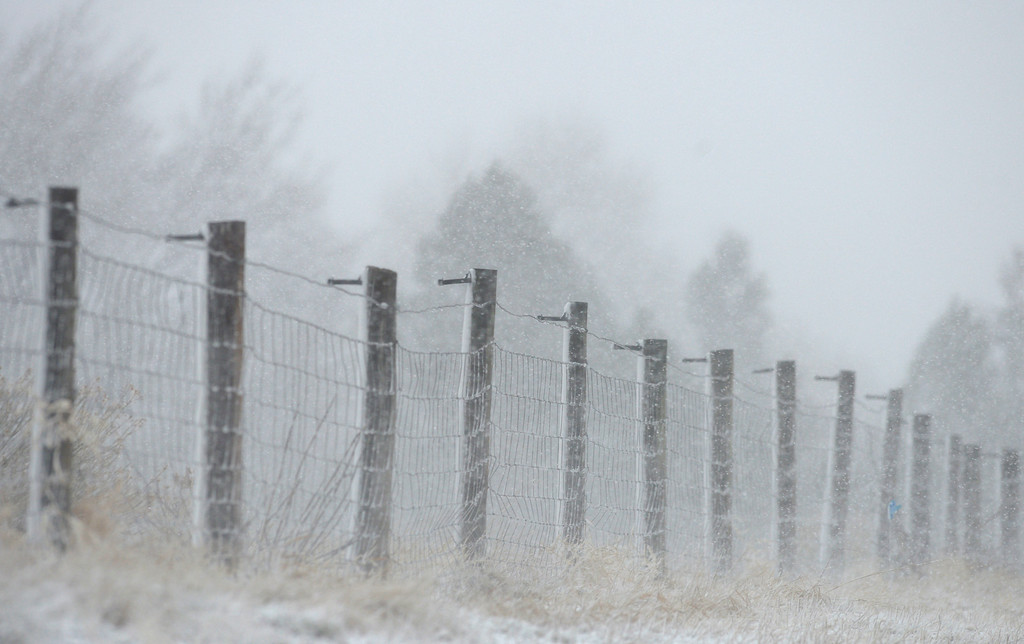 . LONGMONT, CO - MARCH 13: Snow blows through a fence line along Vermillion Road during the blizzard March 13, 2019. To view more photos visit timescall.com. (Photo by Lewis Geyer/Staff Photographer)