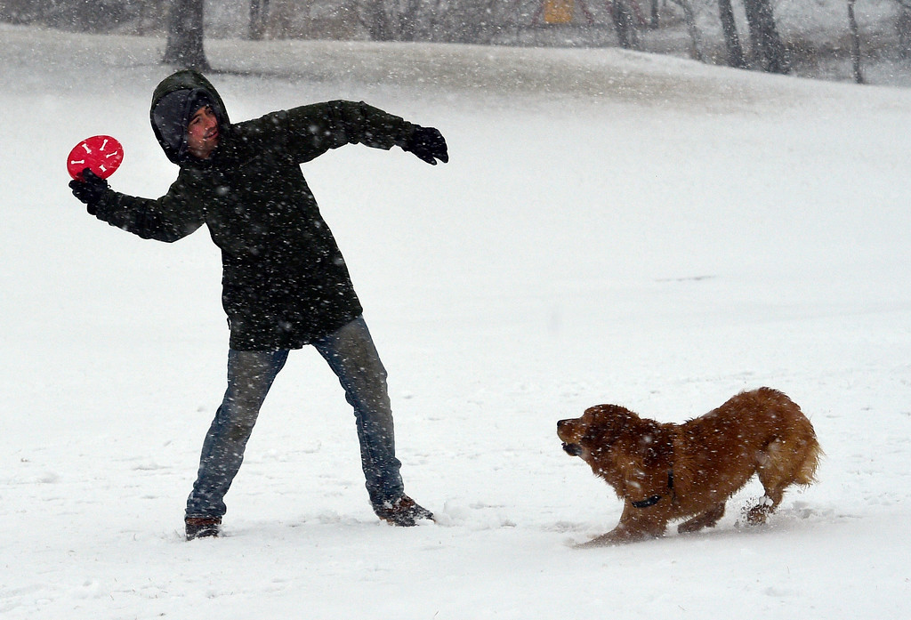 . BOULDER, CO - March 13, 2019:  Alex Patterson and his dog, Ellie, play in the snow at Scott Carpenter Park  during a heavy snow storm in Boulder. For more photos, go to dailycamera.com. (Photo by Cliff Grassmick/Staff Photographer)