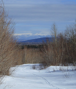 XC Skiing 2008
