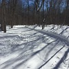 The snow was great on the trails making conditions ideal.