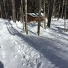 Cabin on the trail at the Jackson XC Ski where you can warm up and get hot chocolate!