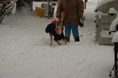 Luke playing in Snow