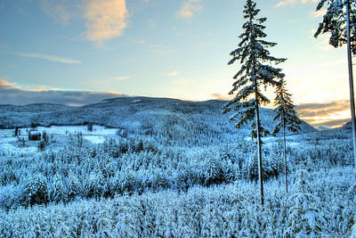 Nanaimo River Valley - First Winters Snow - BC, Canada