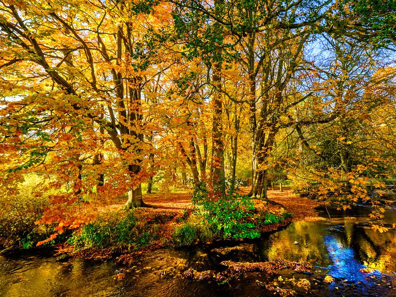 The River Dove, Autumn