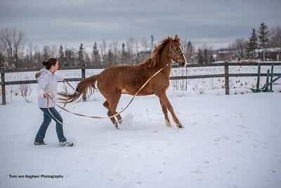 Tom von Kapherr Photography-9847