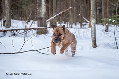Tom von Kapherr Photography-7168