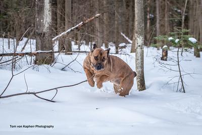 Tom von Kapherr Photography-7165