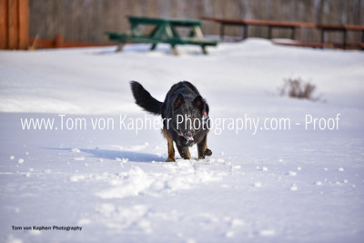 Tom von Kapherr Photography-0308