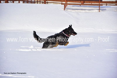 Tom von Kapherr Photography-0337