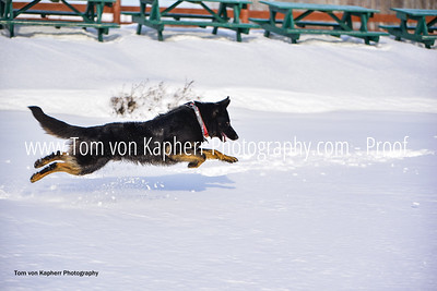 Tom von Kapherr Photography-0341