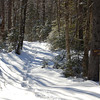 Snowshoe Trail, Second College Grant, New Hampshier