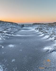 Hampton Tundra
