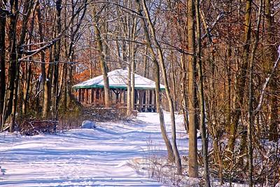 South Orange Reservation in Winter
