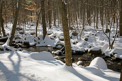 Jackson Brook in Hedden Park, Morris County, NJ