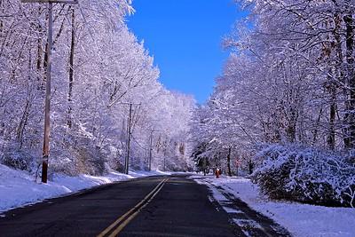 My Street in Winter