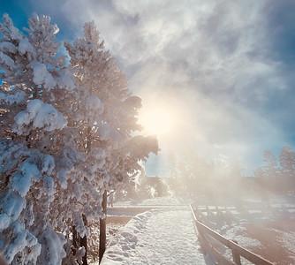 Snowy sunburst