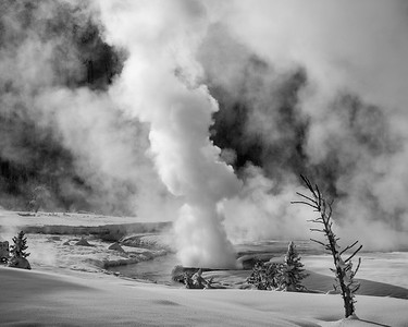 Winter in Yellowstone