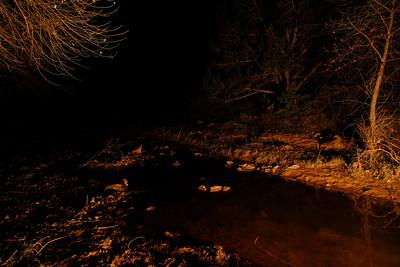 Creek in firelight